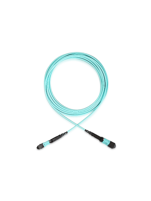 MTP (M-M) Elite 12 Fiber OM4 Plenum Cable